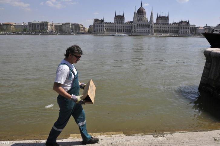 Egészségügyi gázmester elhelyez egy patkánycsapdát a Duna partján, a fővárosi Batthyány tér közelében 2013. április 25-én.