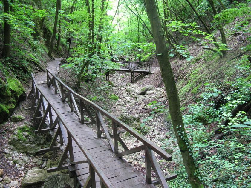 A Dera-patak Pilisszentkeresztnél ered, és Szentendrénél torkollik a Dunába. Bejárható szurdokvölgyében búvópatakként csordogál, néhol egészen eltűnik a föld alatt.