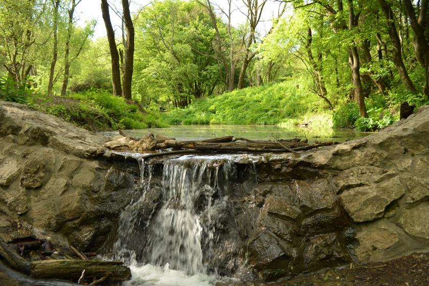 Érintetlen patak völgyében sétálhatsz a Pilisben: fél óra alatt bejárható, mégis felejthetetlen kaland