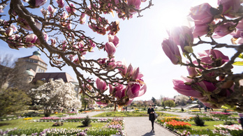Csütörtökön még szép tavasz lesz