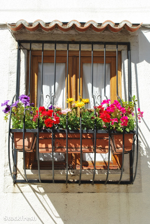 stockfresh 728593 typical-window-balcony-with-flowers-in-lisbon