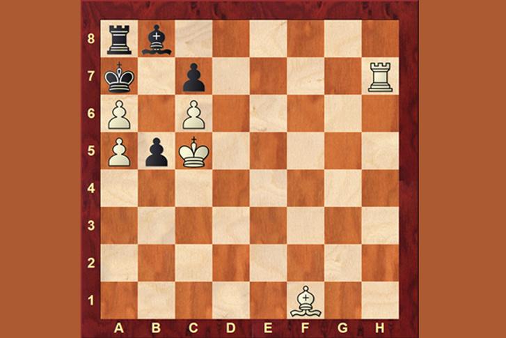 sakkész jó