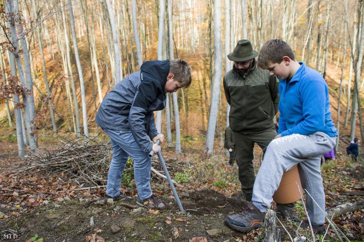 Őszi erdősítés: diákok fát ültetnek az Ipoly Erdő Zrt. területén a Nógrád megyei Diósjenő közelében 2017. november 6-án.