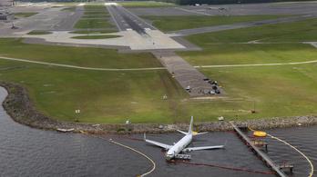 A kutyák és macskák nem élték túl a folyóba csúszott Boeing 737-es balesetét