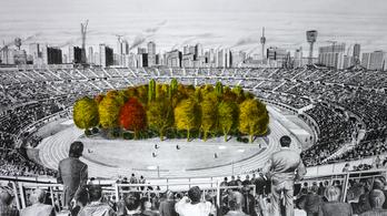 Erdővel telepít be egy osztrák futballstadiont egy svájci művész