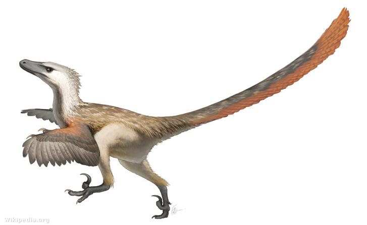 A Velociraptor fantáziarajza