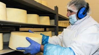 Rákaptak a Közel-Keleten a magyar sajtra