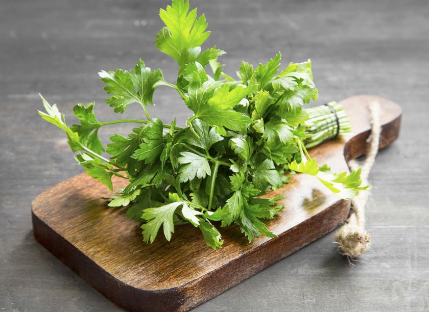 A petrezselyem az egyik legtöbb vasat tartalmazó kerti növény, de kalciumban, káliumban, A-, C- és K-vitaminban is kiemelkedően gazdag. Ne csak levesbe tedd, készíts belőle ízletes pestót!