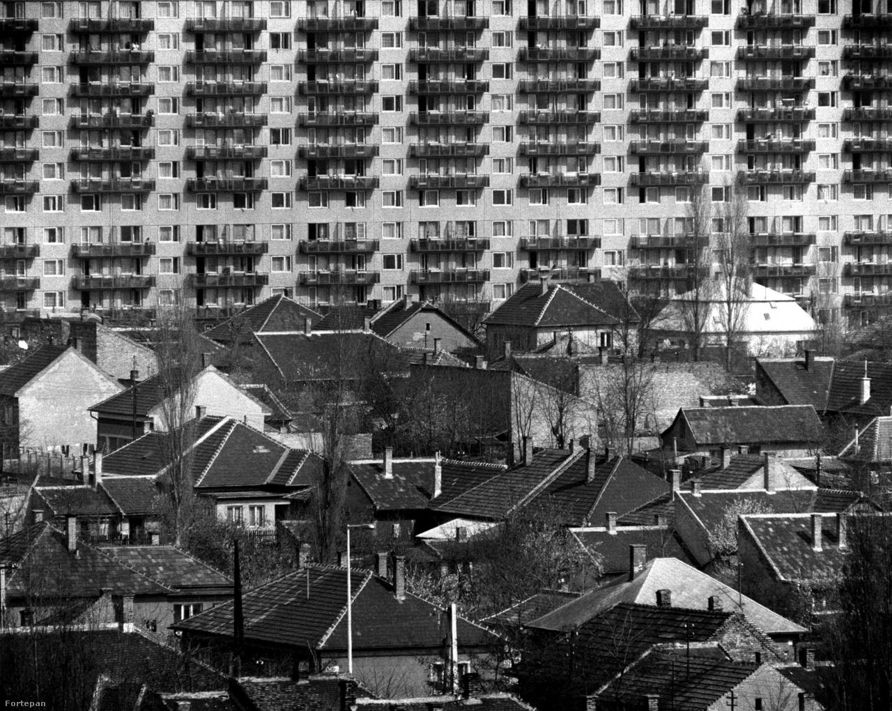 A régi és az új Palota. Rákospalota 1923-ben kapott városi rangot, 1950-ben viszont pestújhely nagyközséggel együtt beolvadt a fővárosba. Ezek mellett jelölték ki azt a 136 hektáros terület, ahová a lakótelepet építették. Ennek a helyén leginkább bolgár kertészetek és mezőgazdasági területek voltak, de azért laktak is itt emberek, akiknek elbontották a házát. Cserébe volt, aki közülük a lakótelepre költözhetett.