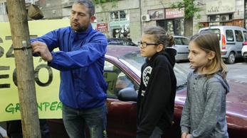 Erős nitrogén-dioxid-szennyezést mért budapesti iskolák bejáratánál a Greenpeace