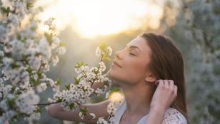 Tudtad, hogy a szaglásunk közvetlen kapcsolatban áll a memóriánkkal?