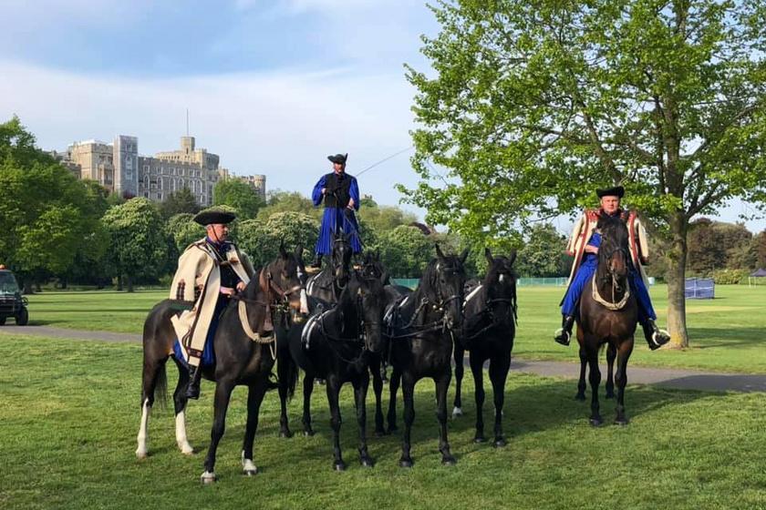 Óriási büszkeség! A brit királyi család előtt ügettek a gyönyörű hortobágyi lovak