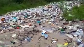 Ez a szeméthegy a Duna romániai szakaszában fog kikötni