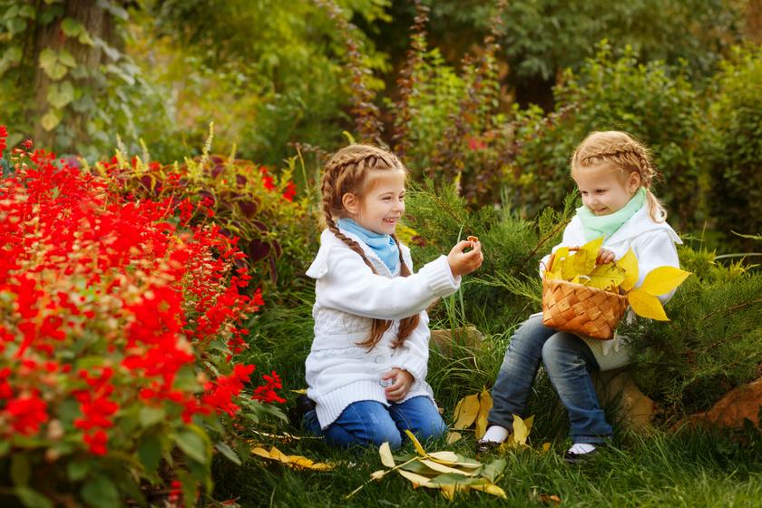 A növényvakság nem betegség, de súlyos probléma: mit tehetnek a szülők ellene?