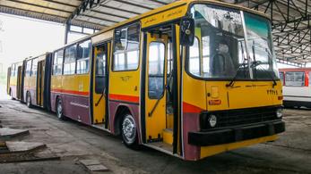Még mindig egyben van a leghosszabb magyar busz