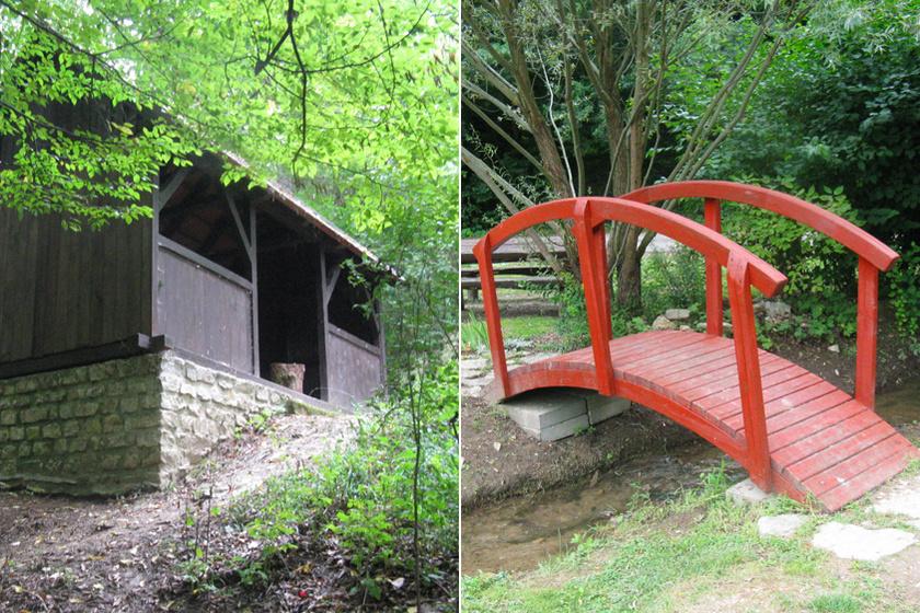 Egy eldugott kincs Balatonfüred fölött: vadregényes patakvölgy, ahol érintetlen a természet