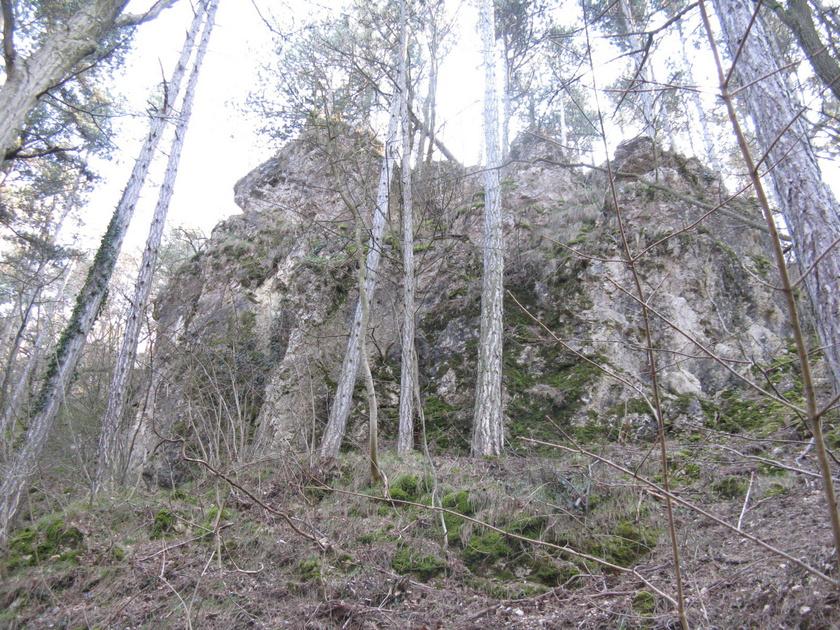 A szurdokvölgy nyers, hatalmas sziklamonstrumai és a patak medre a Pannon-tenger egykori uralmát mutatják be szemléletesen, ami egyébként a kihelyezett földtörténeti tablókon is végigkövethető.