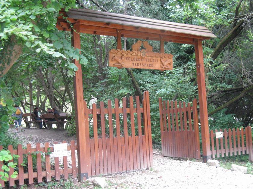 A szurdokvölgy a Koloska-völgyi Vadasparkból nyílik, ha pedig az idő engedi, itt is érdemes picit elidőzni, a belépés egész évben ingyenes.
