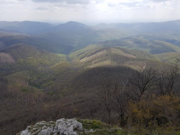 Vagasteruletek a nemzeti parkban foto Galhidy Laszlo