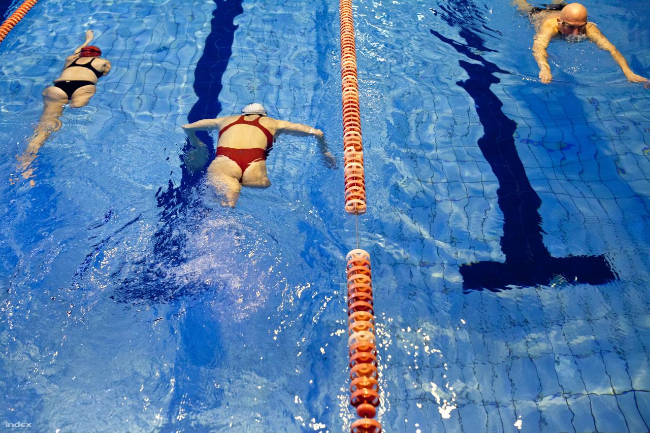 Ez egy kiváltság - XXXIV. Magyar Sajtófotó Pályázat 2015 -Sport Kategória(sorozat) 2. díjIllés Fanni lábak nélkül, összenőtt ujjakkal született. 12 évesen kezdett úszni. Eleinte még csak édesapját hagyta le a medencében, később már versenytársait is. A kétszeres Európa-bajnoki bronzérmes paralimpikon 2015-ben az IWAS Világjátékokon száz méter mellúszásban országos csúcsot döntött.Fotósunk egy napot töltött Fannival.