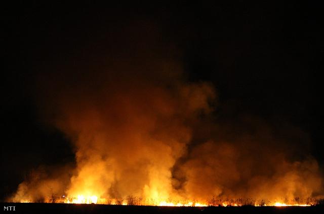 Több száz hektáron égett a nádas Jászberény-Hajta térségében március 26-án