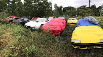 Sírjunk együtt: 11 Ferrarit rohasztottak a gazban