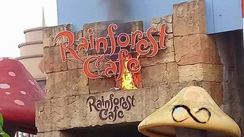 Kigyulladt egy kávézó Disneylandben, a turistákat evakuálták