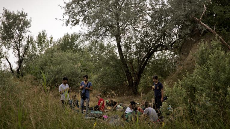 Egy fotós csaj száz menekült férfival a susnyásban