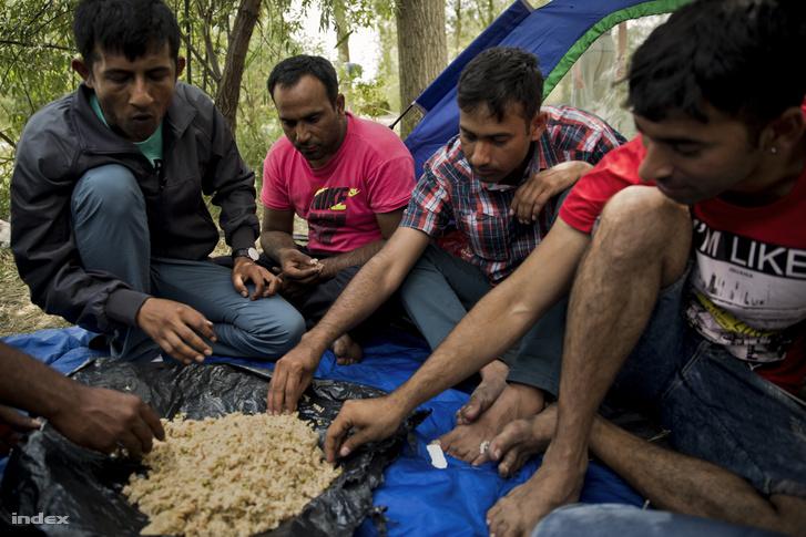 Menekültek a szabadkai téglagyár közelében