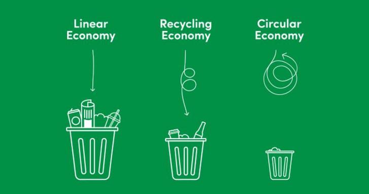 Forrás: ecoware.co.nz