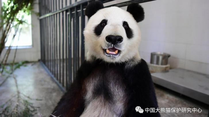 Baj Jun már Kínában 2019. május 17-én