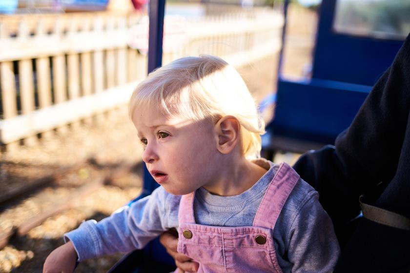 Ingyen utazhatsz a Gyermekvasúton: csak ez az egy dolog kell hozzá