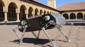 Kis befektetéssel most már bárki építhet robotkutyát