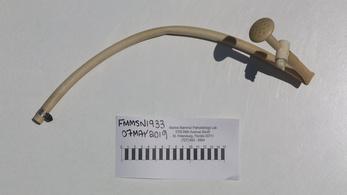 Műanyag zuhanycsövet találtak egy delfinben