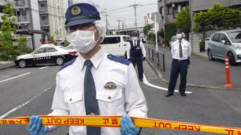 6-7 éves diáklányokra támadt késsel egy férfi Tokió mellett