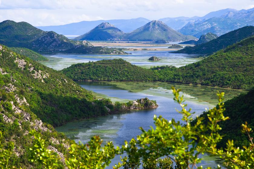 Albánia és Montenegró határvidékén található a Shkodrai-tó, a Balkán-félsziget legnagyobb állóvize. A zöld növényekkel tarkított víztükör és a háttérben magasodó hegyek képe egyszerre lélekemelő és szemet gyönyörködtető látvány.