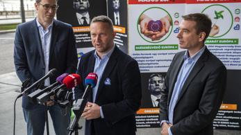 Ujhelyi István szeretne Magyarország zöld EP-képviselője lenni