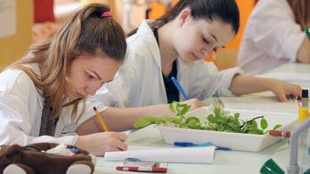 Akár minimálbért is kaphatnak majd a jól tanuló diákok
