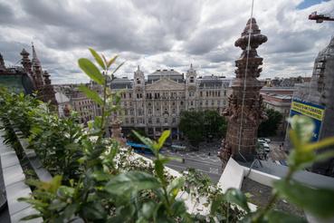 A tetőteraszt leomló és álló növényekkel igyekeznek elrejteni, hogy lentről csak a egy tetőkertet lásson, aki feltekint.