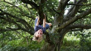 Így fejleszti a gyerek egész testét a szabad játék