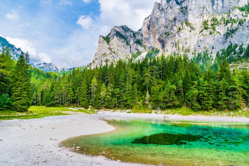 A téli időszakban a Grüner See leginkább egy nagy rétre hasonlít az erdő közepén. Ám, amikor beköszönt a tavaszi olvadás, a tó medre megtelik vízzel, a mezőt pedig lassacskán ellepi a víz.