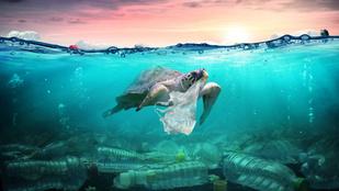 A saját életünk múlik az óceánok egészségén
