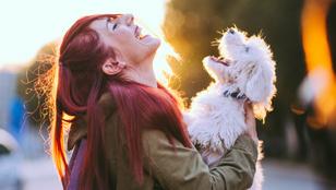 Vérünkben van a kutyák szeretete