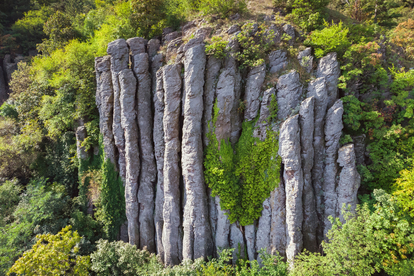 Bazaltoszlopok sorakoznak a Balaton-felvidék tanúhegyének oldalán. Tanúhegy, ugyanis a 3-4 millió évvel ezelőtti vulkáni tevékenység nyomait őrzi.