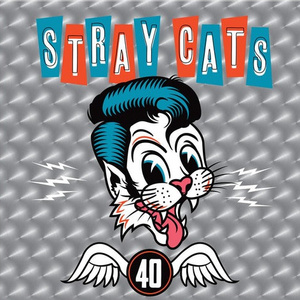 Stray Cats40