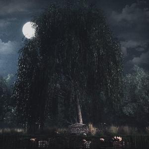 Bones Underthewillowtree