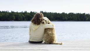 Ha stresszel a kutyád, az miattad van?