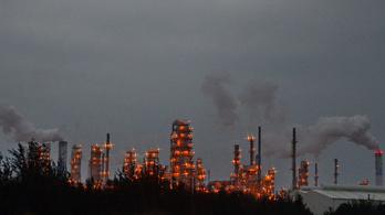 7800 vietnámi indított pert egy nagyvállalat ellen környezetkárosítás miatt
