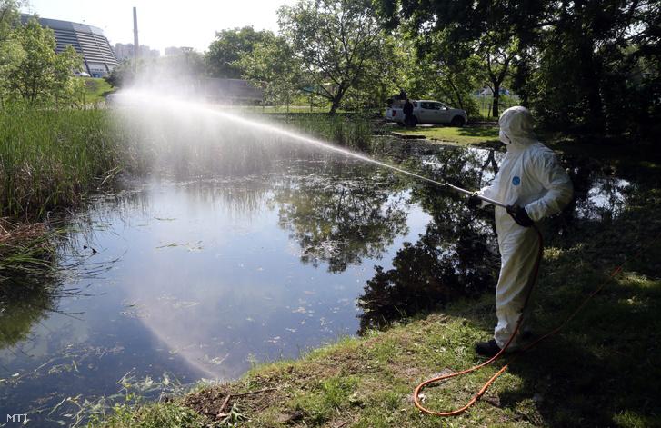 Szúnyogirtás az egyetemvárosi tónál Miskolcon 2019. május 25-én. A védekezés során olyan környezetbarát készítmény kerül a környezetbe, amely kizárólag a szúnyoglárvákat pusztítja el, más élőlényekre és a környezetre ártalmatlan.