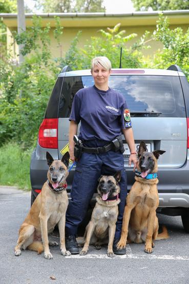 Sárközi Bernadett  főtörzszászlós, bűnügyi kutyavezető és a kollégái. Balról a rangidős, Dongó, középen Körte, a (még) kajla meg Priusz